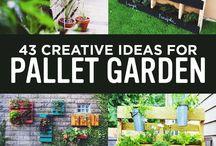 Landscaping & Design Ideas