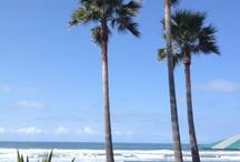 Luxury Beach Destinations
