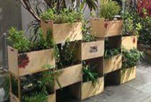 Edible Gardens Urban