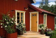 OUR HOUSE - The garden