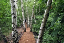 Südgelände Nature Park