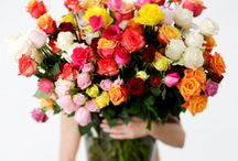 beautiful flowers & things / by Sandra Hillblom