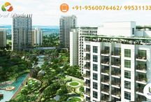 Central Park 3 The Room / Central Park  Launch New Township in The Room Sector 33 Sohna .Contact- 9560076462