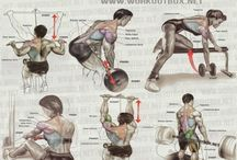 Various workout target areas