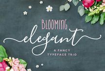 Wedding Fonts & Design Graphics / graphics, fonts and other design elements suitable for wedding designs.