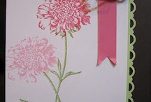 stampin / stampin up cards / by pamela keith