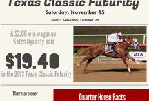 2014 Fall Meeting of Champions / 18th Fall Meeting of Champions at Lone Star Park / by Lone Star Park at Grand Prairie