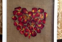 dried roses / by Amber Purstell