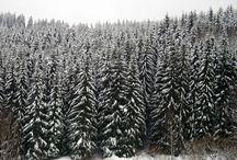 Obrázky z Krušných hor/ Erzgebirge, ve středověku Fergunna či Mirihwidu
