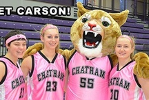 Meet Carson! / Carson the Cougar mascot checks out Chatham campus events and Chatham Athletics! / by Chatham University