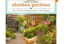 I really love chickens! / by Donna Alston