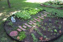 My future garden / Garden nice ideas