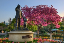 Disneyland  / Images from Disneyland Park in California