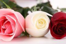 Kvetinky ♥