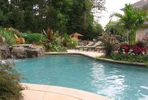 Pools glorious pools! / Interesting pools for outdoor fun! Concentrating on tropical settings.