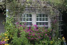 Landscaping / by Cindy Freed /Genealogy Circle