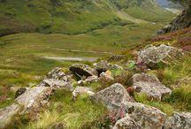 SCENE • Highlands