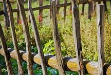 Gardening - Fences