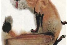 caligraphi animals