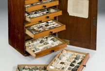 Mineral cabinet