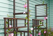 Design - Garden / by Sea Gray