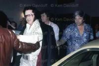 Elvis Presley classic rock icon photos / Elvis Presley classic rock icon photography