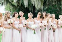 Color Palette / The color Blush! / by Brittany Strycharz