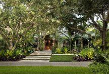 Tropical Garden Inspiration
