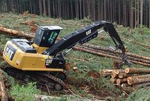 Forestry / by Peterson Cat
