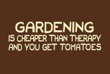 Gardening / by Teresa Hale