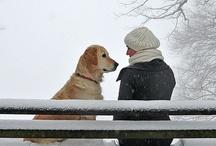 Man's Best Friend / by Sharon Minton