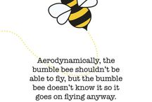 Bee quotes / Cute and Kind and Thoughtful words with bees