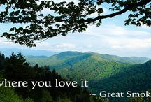 Real estate in the Great Smoky Mountains / Isn't it time for you to get your own piece of the Great Smoky Mountains?