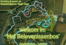 dingen doen in nl