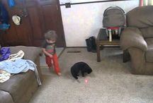 Laser Pointers rule! Cat and Toddler enjoy the laser show :-)
