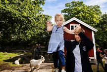 Activities for Kids / Thanks to Karlskrona being in the middle of the archipelago and close to nature, it's a great place to take the kids. Anywhere you go can be an adventure, the old military buildings, the sea and the lush forest.