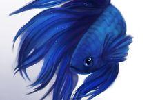 рыбы арт