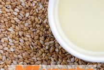 Green Millet / Varsha Industries are the Exporters of Food Grains world wide. Food grains they provides are Sorgham, GreenMillet, Barley, Rice, Wheat,  Corn... and many more.. visit our website for further details... http://varshaindustries.co.in/grain.php.
