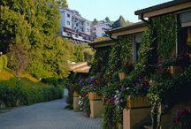 Balletti Park Hotel / hotel 4**** a Viterbo