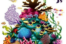 coral reef / by Mayya Medved