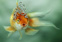 Magical Fish / Fish seem to lead a fascinating life in and out of the water, especially goldfish/koi and Siamese fighting fish/bettas. / by Tracyene Charles