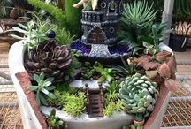 Grădină cu zâne