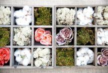 Inspiration | Arrangements / by Sweetness & Light Floral Design