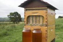 Bee Honeyst