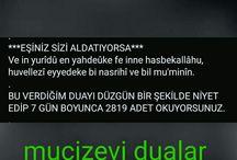 dualarim