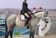 modell horses