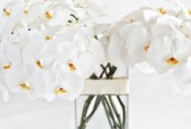 Luxury Flower Bouquets | NYC / https://www.gabrielawakeham.com Luxury Flower Shop - Online With Delivery Service in NYC (Manhattan and Brooklyn). Modern, Chic Bouquets Delivered since 2009 by Local New York Florist.