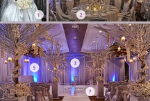 Luxe Wedding Decor / Super amazing wedding decor from some weddings I shot.