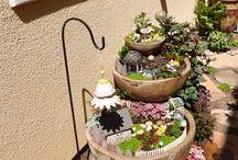 Meu lindo jardim!!