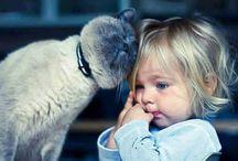 Animal ❤️